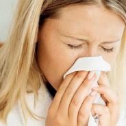 Nekaj o alergijah